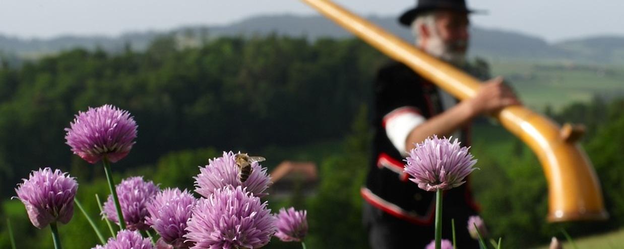 [:bg]Швейцарски билки и подправки[:en]Swiss herbs and spices[:]