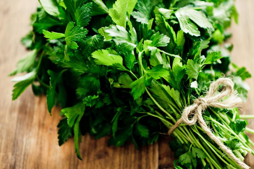Parsley from Switzerland