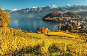 Swiss wines